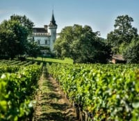 Bordeaux winery and chateau