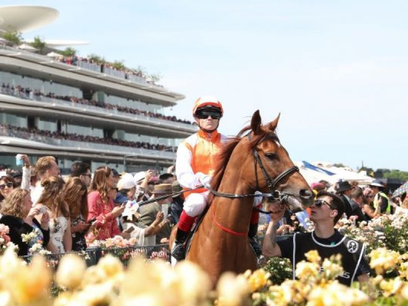 Cup Day Express Package