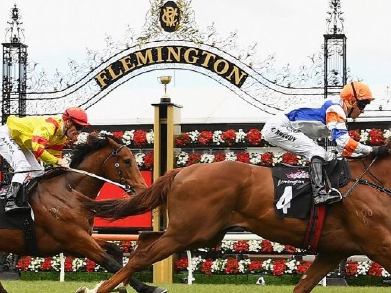 Stakes Day Express